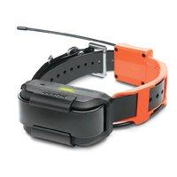 Электронный ошейник для собак Dogtra Pathfinder TRX c GPS