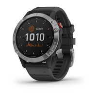 Спортивные часы Garmin Fenix 6 Solar Silver with black band