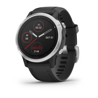 Спортивные часы Garmin Fenix 6S Silver with Black Band