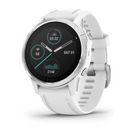 Спортивные часы Garmin Fenix 6S White with White Band